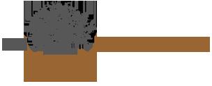 logo-big1